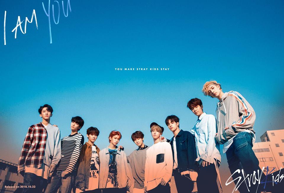 第10名 Stray Kids 今年3月由JYP娛樂推出的九人新男團,出道前以實境生存節目《Stray Kids》曝光於大眾面前,10月底發行了第三張迷你專輯《I am YOU》,出道未滿一年就已推出了三張迷你專輯。