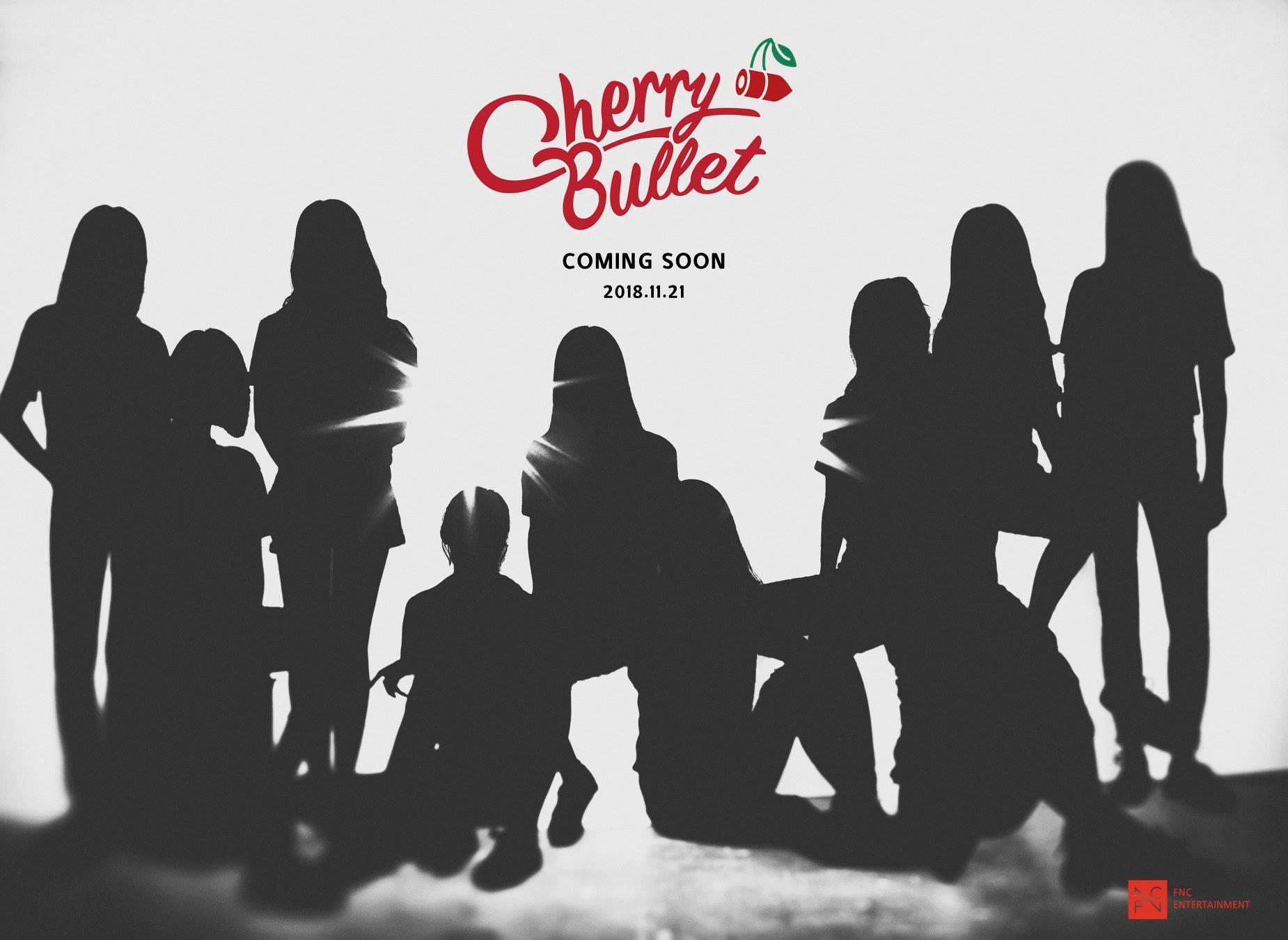 FNC娛樂即將推出十人女子組合「Cherry Bullet」,官方也從21日開始陸續公開成員們的個人宣傳照,引發粉絲高度期待。