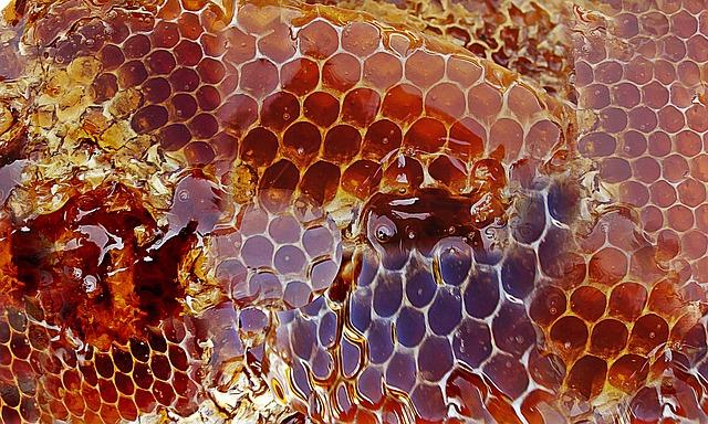Top8 蜂巢 雖然說蜂蜜本身就很好吃了,但嚼蜂巢時那種黏呼呼的聲音超讓人中毒的啊! Top7 奶豆腐湯圓(印度甜點) 這是印度很有名的傳統甜點。像吃海綿一樣的口感和散發玫瑰花香的糖漿,不管是聲音還是味道都讓人欲罷不能啊~
