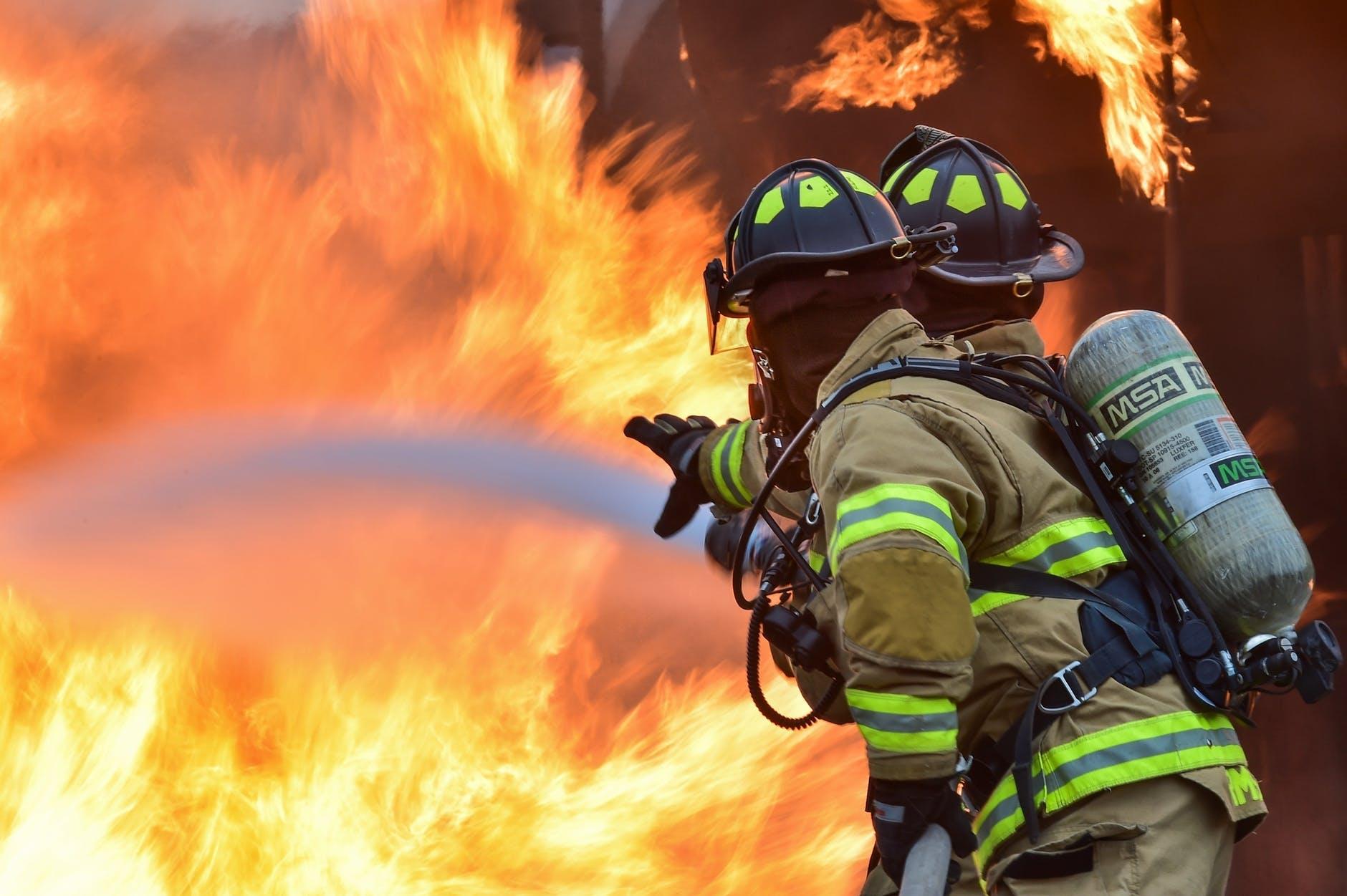 7日凌晨2點10分,安城市薇陽面的一流浪動物收容所發生火災,消防員出動後約3小時滅火。 火災造成被關在收容所內的180隻狗狗與80餘隻貓咪死亡。