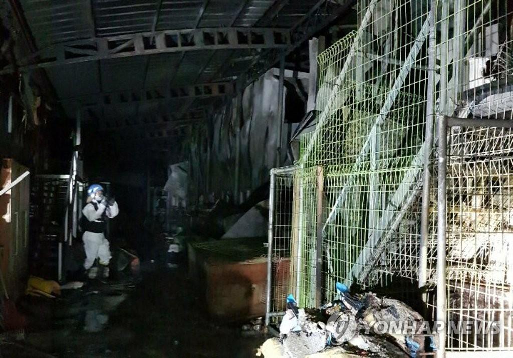 收容所380平方公尺中,約190平方公尺與空調、飼料等器物被燒毀。消防署估算約2600萬韓元財產損毀,沒有人受到波及,僅救災的田氏(33歲)消防員被咬傷右腳背,目前已受到治療。