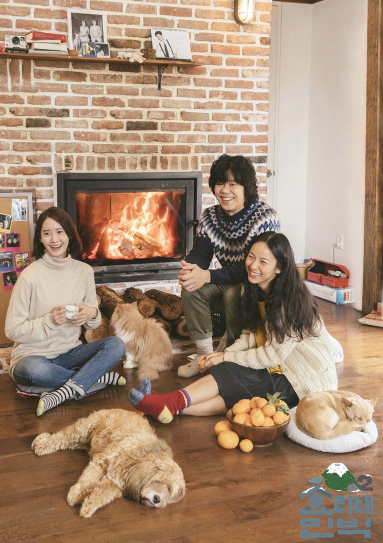 火災當時收容所狗狗400隻與貓咪100餘隻等,共500餘隻的流浪動物受保護。歌手李孝利2011年在收容所領養了「順心」後,以留在收容所的流浪動物們為主旨,發表了相關音源,並把收入全額捐贈給收容所。