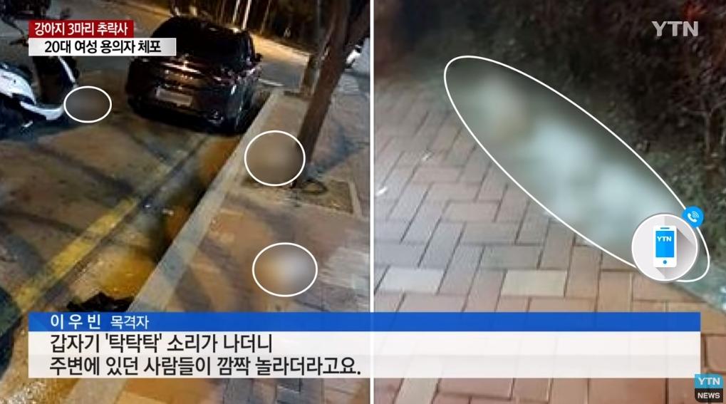 三隻小狗遭人發現從大樓高樓層墜落而亡,警方指出嫌犯為一位20代女性。A某(26)居住於釜山海雲台的一棟住商混合的公寓中,遭懷疑違反動物保護法。
