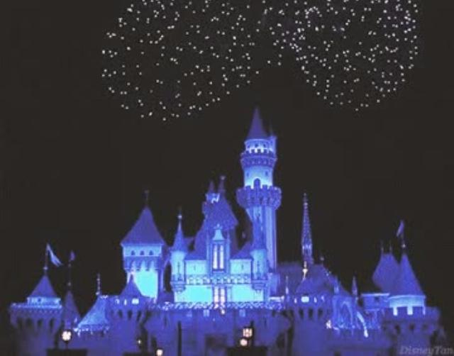 上海迪士尼開幕規定一大堆,首先你不能帶自拍棒....